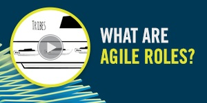 What Are Agile Roles? - 300x150px