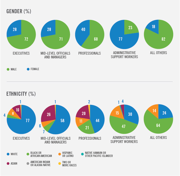 Gender and ethnicity stats