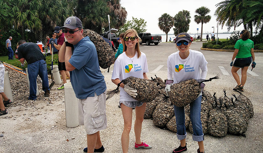 Employees volunteering to help the environment